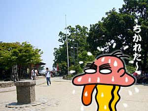takao_18.jpg