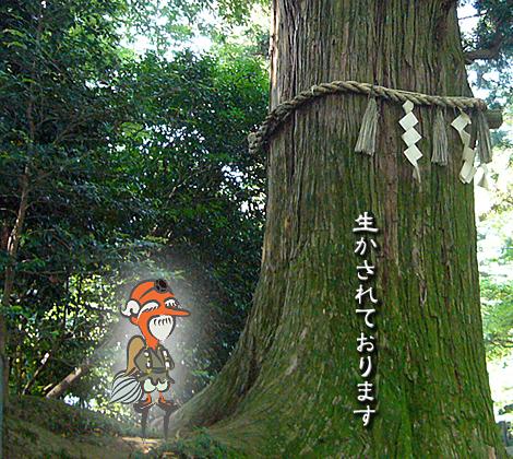 tengu_2.jpg
