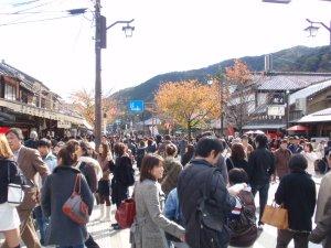 arashiyama220273s.jpg