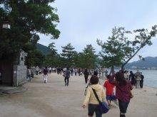 miyajima06297ss.jpg