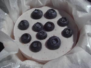 sweet_of_oregon_blueberry08448_cs.jpg