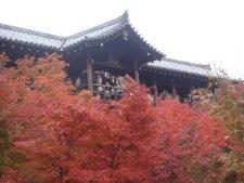 tofukuji02036ss.jpg