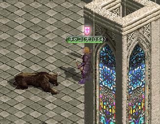熊倒れる・・・