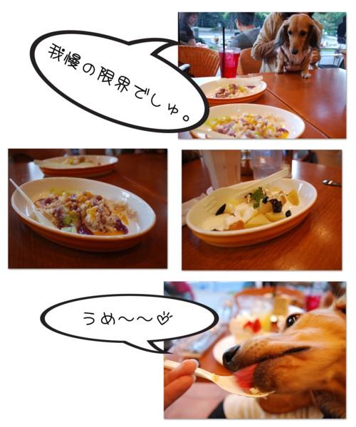 2DSC_0065.jpg