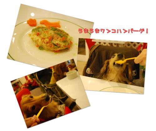 2DSC_0982.jpg