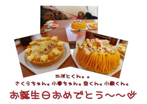2DSC_1180.jpg