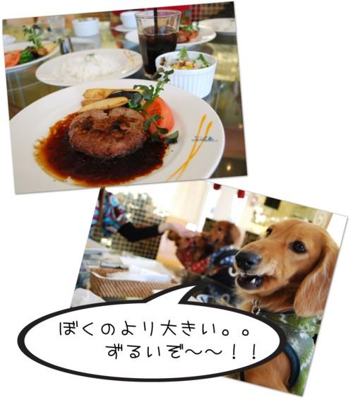 2DSC_1620.jpg
