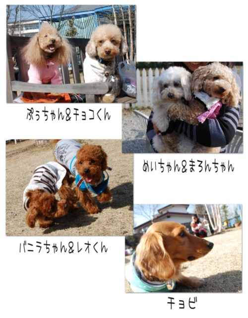 2DSC_2605.jpg