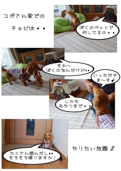 2DSC_7696.jpg