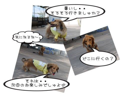 2DSC_8927.jpg