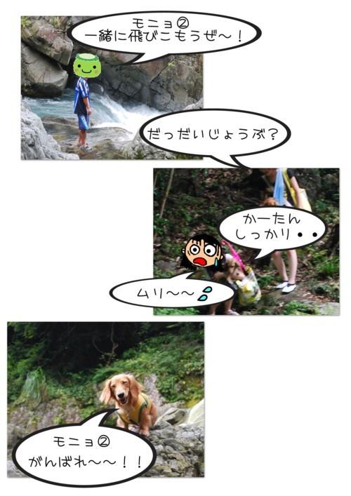 2DSC_9491.jpg