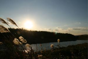 木津川と夕日