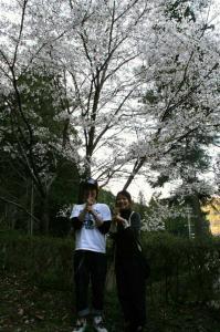 桜の下にんにん!