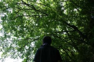 森は気持ちいい♪