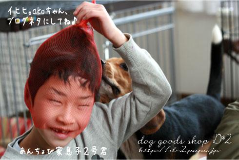 12_20090118234732.jpg