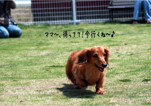 15_20090513115758.jpg