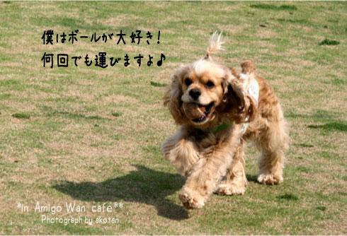 21_20090513115820.jpg