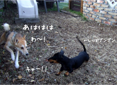 2_20081019140632.jpg