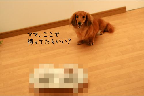 3_20090715233057.jpg