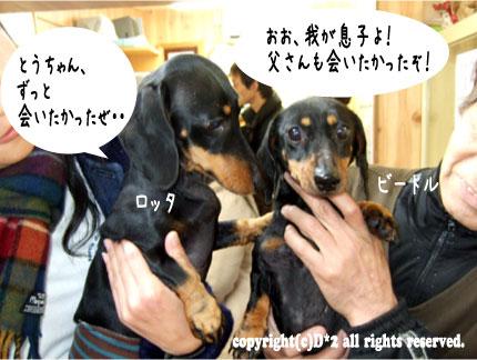 4_20081208004614.jpg
