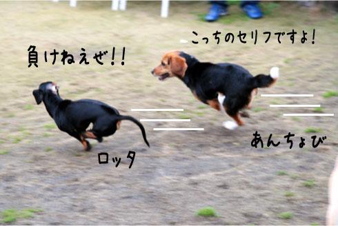 5_20090322164043.jpg