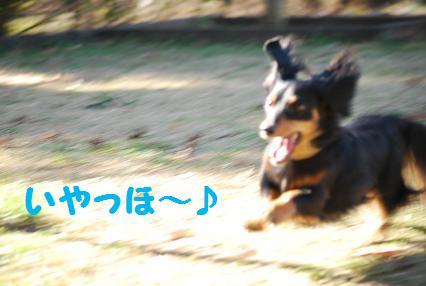 ビーン走る2