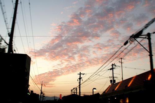 2008101329.jpg