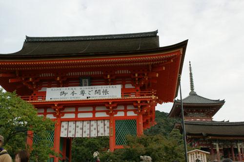 2008101374.jpg