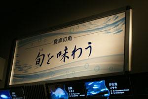2009070525.jpg