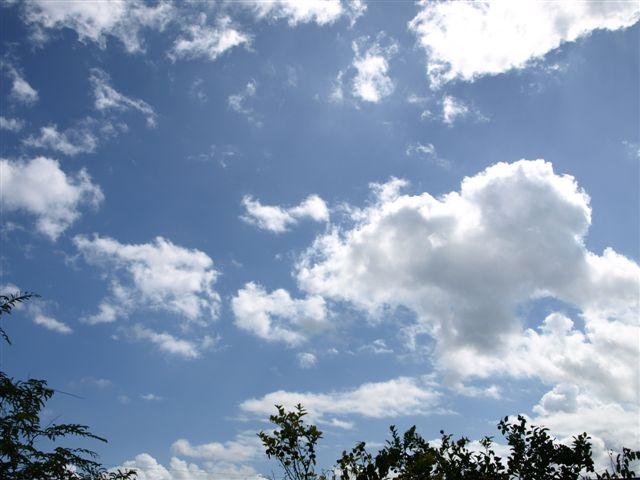 青い空の真下で・・・