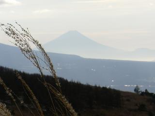 霧ヶ峰からの富士山