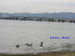 CIMG3309.jpg