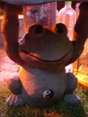 090613_frog.jpg