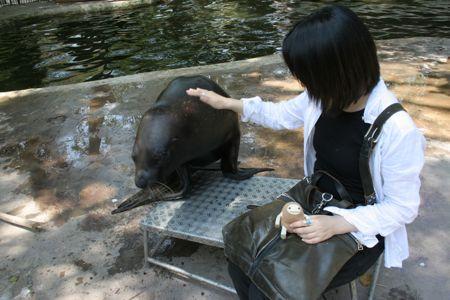 zoo_01.jpg