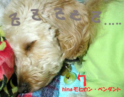IMGP7325-pendanto.jpg