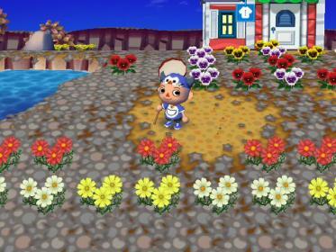 かなこさんの花畑