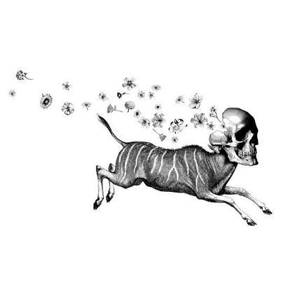 Death in a Stampede by Dan Hillier