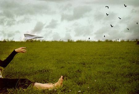 sometimes I wanna fly by Gwendolyn Kraehenfuss