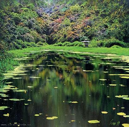 Pond by Taras Loboda