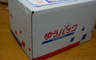 CIMG3554.jpg