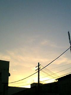PA0_0007.jpg