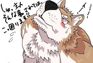 IMG_000043.jpg