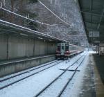 kinukoen2012312.jpg