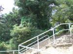 sumaura20088.jpg