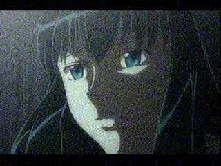 snapshot20081109180216.jpg