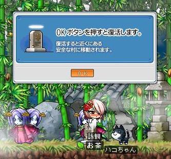0216 姫でお墓(;´Д`)