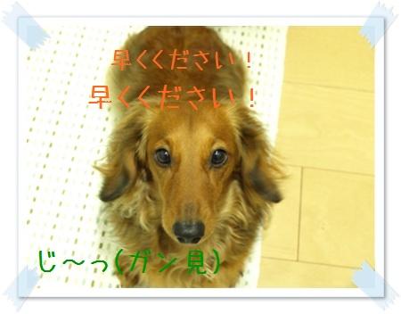 090217_01.jpg
