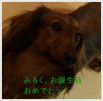 090301_03.jpg