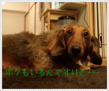 090301_04.jpg