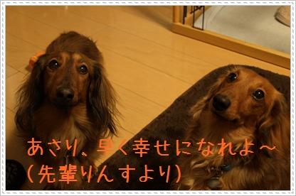 090317_04.jpg